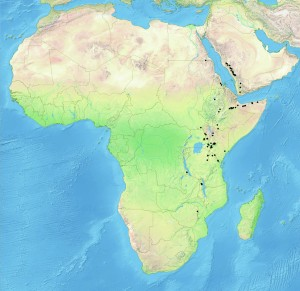 Regions where the African Pencil Tree grows