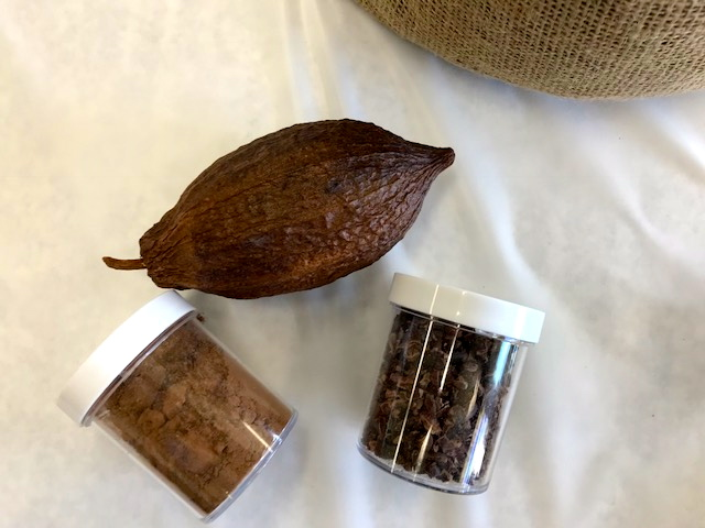 cocoa-seeds